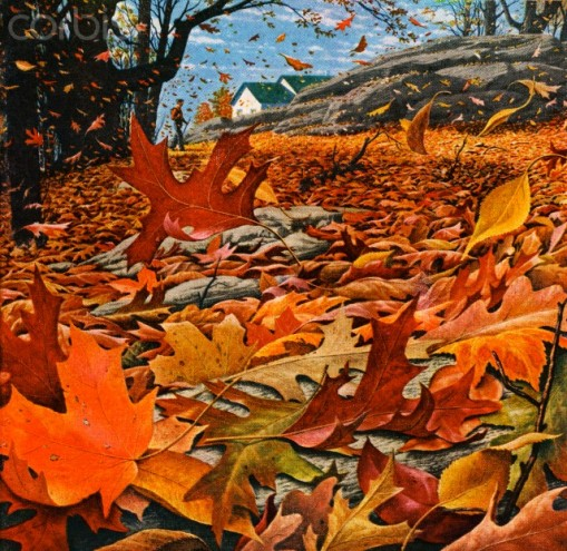 Vintage illustration of wind blowing colorful fall leaves in a field.  Screen print, 1955. --- Image by © PoodlesRock/Corbis
